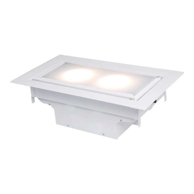 Built-in LED two head meeting light